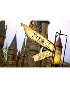 Весенние каникулы с Гарри Поттером! (Великобритания)